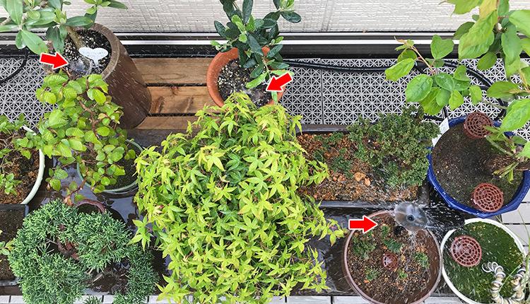 スプリンクラー【噴水】 GKS104(S-104) 盆栽棚