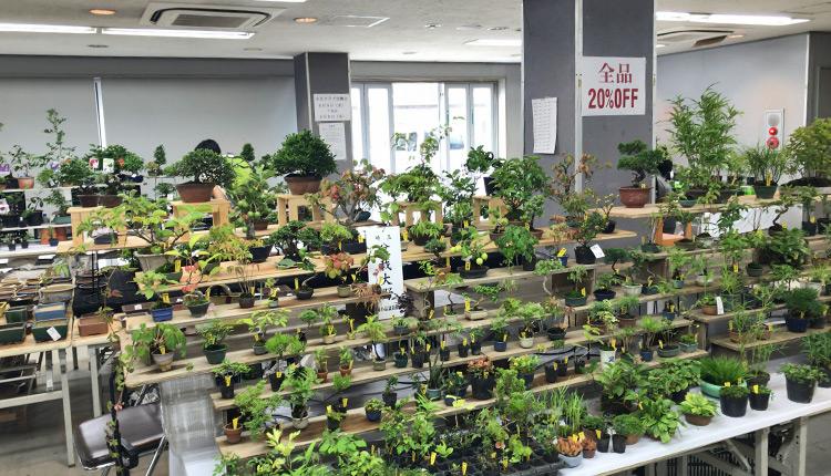 上野グリーンクラブ 2018サマーセール 屋内ブース