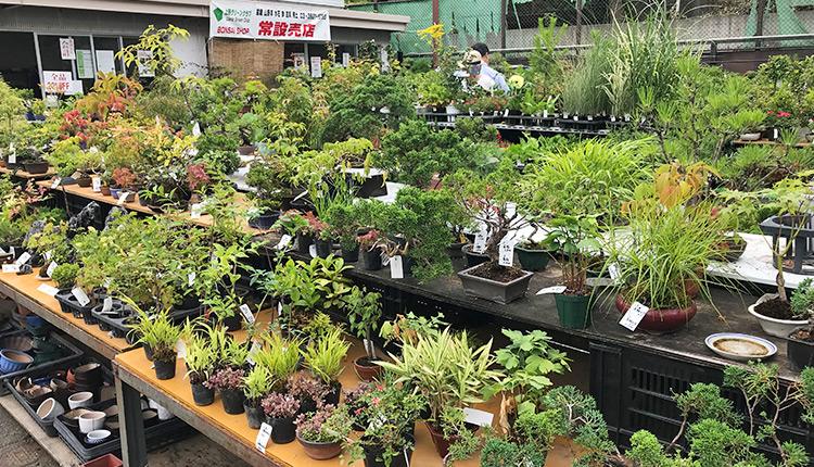 上野グリーンクラブ 2018サマーセール 常設売店